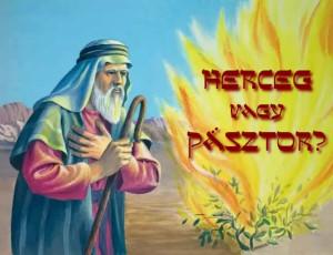 Herceg vagy Pásztor?
