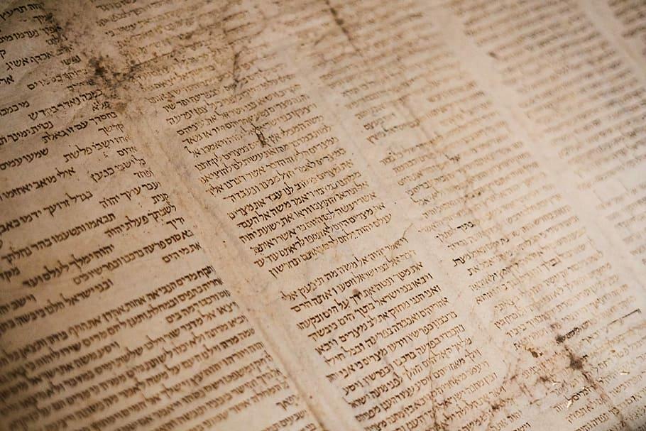 Gondolatok a parasából (Semót): Isteni memória – emberi memória