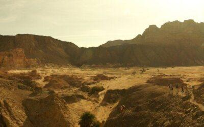 Bamidbár azaz a pusztában – Gondolatok a parasáról