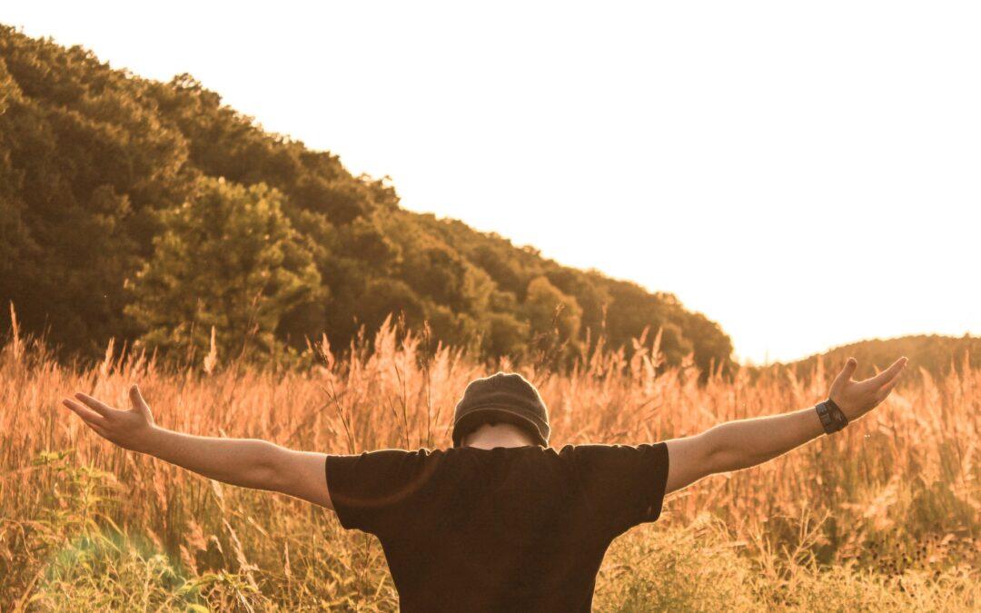 Alázatos ember – Gondolatok a parasáról: Behaalotcha