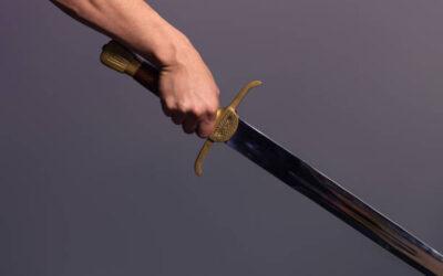 Kard ellen kard – szó ellen szó! – Gondolatok a Parasáról