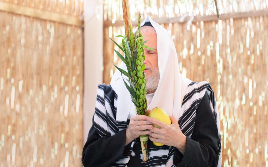 Gondolatok a parasáról – Szukkót: amiről a zsidóság megfeledkezett