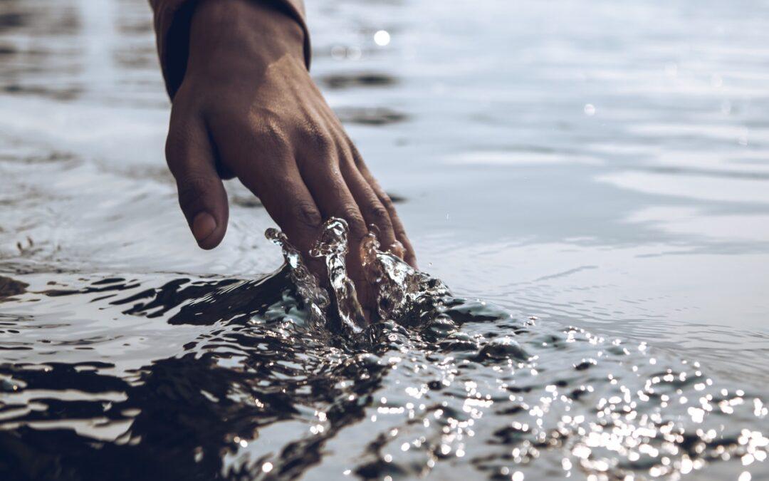 A Szavát adta – Gondolatok a Parasáról